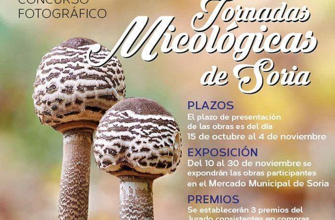 Mercado Municipal de Soria convoca su concurso de fotografía micológica